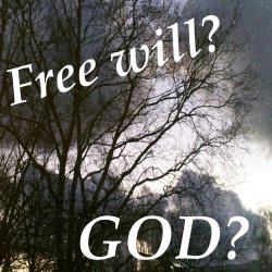 Is God Omniscient ? If so, do we have free will?