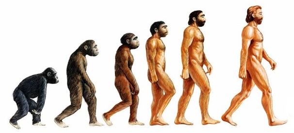 Theory of Evolution vs Creationism Debate
